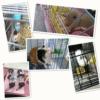 Kép 4/4 - Kisállat itató 80ml / ketrecre szerelhető, fémcsőrös, golyós – rózsaszín (BPS-1258)