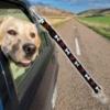 Kép 1/7 - BPS-2751 Mintás, autós kutyapóráz, kis méret / biztonsági öv adapterrel