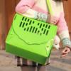 Kép 1/5 - Kisállat hordozó doboz / összecsukható szállítóbox