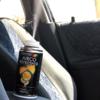 Kép 3/3 - Klímatisztító, frissítő és fertőtlenítő spray / klímabomba autóba - több illat