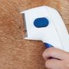 Kép 2/6 - Elektromos bolhairtó fésű kutyáknak és macskáknak