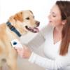Kép 4/6 - Elektromos bolhairtó fésű kutyáknak és macskáknak