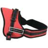 Kép 3/4 - Sport kutyahám - kényelmes kialakítású, piros