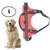Kép 1/6 - L-es kutyahám / 20-30 kg-os kutyák számára - piros