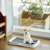 Kép 1/6 - Beltéri kutya toalett / helyhez szoktató, pelenkarögzítő keret