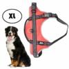 Kép 1/5 - XL-es kutyahám / 30-40 kg-os kutyák számára - piros
