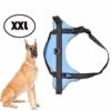 Kép 1/6 - XXL-es kutyahám / 40-60 kg-os kutyák számára - világoskék