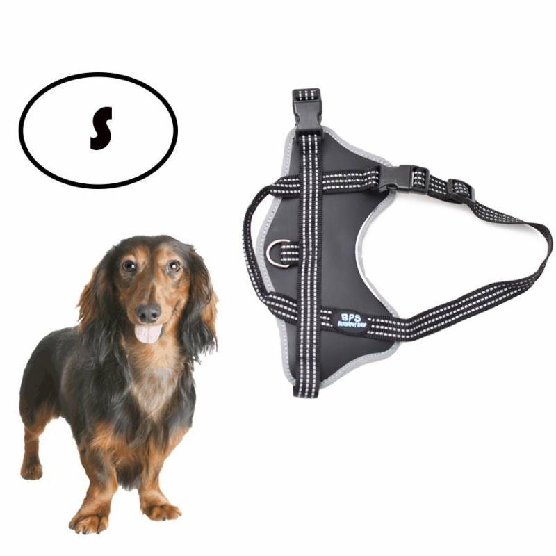 S-es kutyahám / 5-15 kg-os kutyák számára - fekete